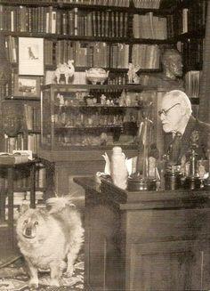 Sigmund Freud, acompañado por su mascota  chow chow llamado Jofi en su despacho,