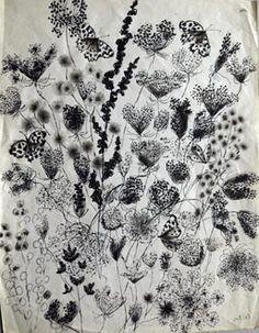 Dom Robert, Ombelles, oseille et papillons, 1963. Crédit photo : Archives de l'abbaye d'En Calcat