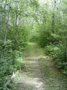 "Several great trails await day hikers visiting Amery, Wis. Read about these and nearby trails in ""Headin' to the Cabin: Day Hiking Trails of Northwest Wisconsin."""