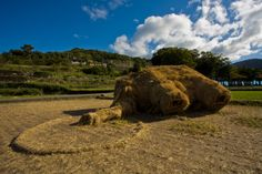 As part of the 2010 Setouchi Triennale art festival in Japan, Musashino Art University students created this woolly mammoth sculpture completely out of straw. The installation was a collaboration with local farmers, who donated the rice straw after the harvest.