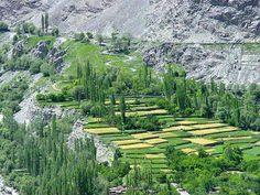 Landscape of Chitral Pakistan