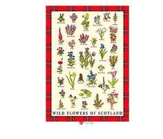 Tea-Towel-with-Scottish-Wild-Flowers