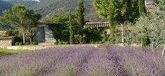 La Bastide de Marie | Luxury Spa Provence | Photo Gallery - Bastide de Marie : luxury property with hotel services in Provence (France)