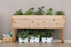 Finished planter box with plants