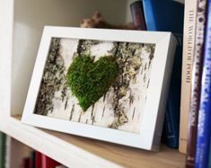 Moss Heart & Birch Bark Rustic Framed Art - Zero Care, Real and Preserved… Tree Bark Crafts, Birch Bark Crafts, Moss Wall Art, Moss Art, Birch Bark Decor, Birch Branches, Birch Trees, Rustic Frames, Nature Crafts