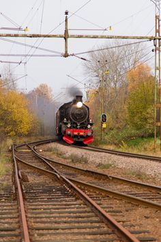 Last tour by steam train on the railway over Hallandsåsen. The railway line over the ridge will be closed down and replaced by a tunnel. By Train, Train Tracks, Train Rides, Ways To Travel, Steam Locomotive, Airplane, Sweden, Trains, Abandoned