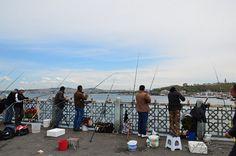 Galata Balıkçıları | Flickr - Photo Sharing!