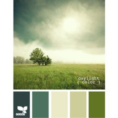 Paint Color Inspiration from Design Seeds ❤ liked on Polyvore featuring design seed and color palette