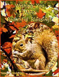 Wishing You Many Bountiful Blessings