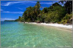 Cahuita National Park, Photography by Damian JamesCosta Rica Traveler Magazine