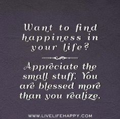 258 Amazing Appreciate The Little Things Images Words Quotes