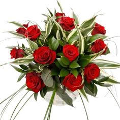 Flowers Direct Seduction - a Dozen Red Roses A dozen seductive red Roses for that special someone in your life, with scented Eucalyptus and lemon-tip foliage. Created, Sold and Delivered by Local Florists. These flowers are normally placed with  http://www.comparestoreprices.co.uk/flowers-and-flower-delivery/flowers-direct-seduction--a-dozen-red-roses.asp