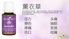 Young Living Lavender 薰衣草  https://www.youngliving.com/signup/?isoCountryCode=US&sponsorid=1704613&enrollerid=1704613
