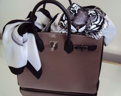 Hermes bags ~ Perfect Match ~ Hermes Scarves/Shawls - Page 2 - PurseForum