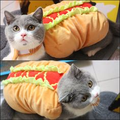 Cat Burger Costume //Price: $14.00 & FREE Shipping //     #instagood