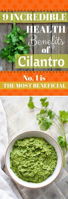 9 Incredible Health Benefits of Cilantro (No. 1 Is the MOST Beneficial)
