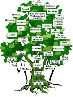 Tree of the Prophet (SAW) - Google Image Result for http://www.islamicbulletin.org/newsletters/issue_19/tree.gif