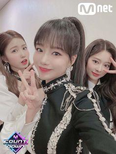 Japanese Girl Group, Action Poses, Yuri, Flower Girl Dresses, Celebrities, Wedding Dresses, Pop Idol, Twitter, Bloom