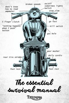 Triumph Logo, Triumph Cafe Racer, Triumph Motorcycles, Custom Motorcycles, Custom Bikes, Motorcycle Posters, Motorcycle Art, Bike Art, Classic Motorcycle
