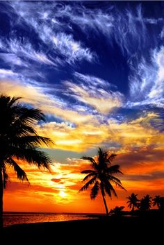 ✯ Sunset on Key West Beach.The most Beautimus breathtaking sunset Ive ever seen in person was In KEY WEST!