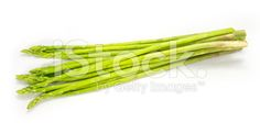 green asparagus isolated on white background – banque photo libre de droits