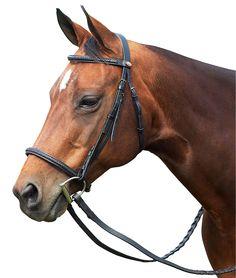English Horses On Pinterest English Horse Tack Hunter