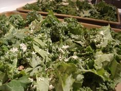 kale chips.  these are always a hit around this house.