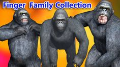 Crazy Gorilla Finger Family Nursery Rhymes Collection for Children    Fi...