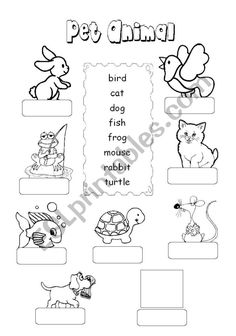 Fill in the blanks and color the picture Then, draw one favorite farm animal in the space Animal Worksheets, Vocabulary Worksheets, Worksheets For Kids, Teaching Kids, Kids Learning, Vocabulary Exercises, Student Motivation, Animal Projects, Teaching Materials