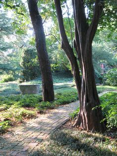 Places and Spaces: Go See DC: Dumbarton Oaks