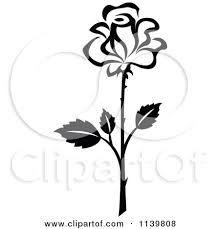 how to draw a dogwood flower