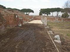 Gever gestione del verde - potature roma