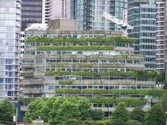 How Do Green Roofs Help the Environment? - Oct 09 2015 08:00 AM - Breaking News - Envirotech Online