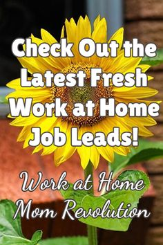 Check Out the Latest Fresh Work at Home Job Leads! Work at Home Mom Revolution