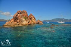 who would like to be floating in the brilliant blue #bvi water today? Snorkelling at the Indians near Norman Island is superb!  Photo by William Torrillo