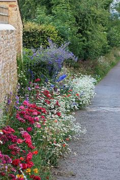 [It doesn't take much space to make a garden, does it?] wildflower bed