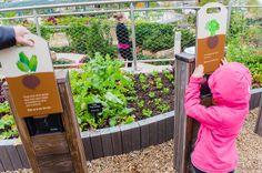 The Rory Meyers Children's Adventure Garden, The Dallas Arboretum, Garden, Children's Garden