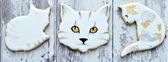 Honeycat Cookies: Cat Cookies for the Honeykitten