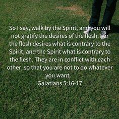 Gal. 5:16,17