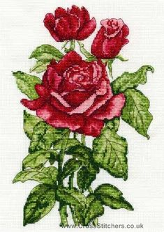 Roses - DMC Cross Stitch Kit