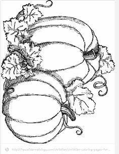 Fall Coloring Pages. Coloring activities, for example in the fall coloring pages, and drawing together are pieces of a child's learning and appreciation. Pumpkin Coloring Pages, Fall Coloring Pages, Adult Coloring Pages, Coloring Books, Halloween Coloring Pages, Fall Coloring Pictures, Fall Coloring Sheets, Nativity Coloring Pages, Kids Colouring