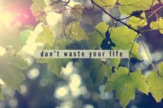 don't waste your time
