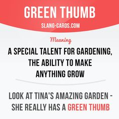 #slang #saying #sayings #idiom #phrase -Repinned by Chesapeake College Adult Ed. We offer free classes on the Eastern Shore of MD to help you earn your GED - H.S. Diploma or Learn English (ESL) . For GED classes contact Danielle Thomas 410-829-6043 dthomas@chesapeake.edu For ESL classes contact Karen Luceti - 410-443-1163 Kluceti@chesapeake.edu . www.chesapeake.edu