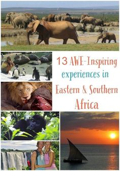 13 Awe-inspiring Things to Do in Eastern and Southern Africa