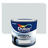 Dulux Valentine, Multi Support, Bottle, Pastel, Gray, Satin Finish Paint, Window Casing, Colors Of The World, The Pacific