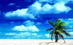 【風景】切なくなるノスタルジック画像といったら・・・!?夏の海なんだよなぁ・・・!!!!(画像あり)   帰ってきたブログマンBTT