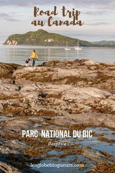 Province Du Canada, Train Travel, Hiking, Road Trips, Camping, Vacation, Mai, Destinations, Culture