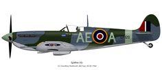 RCAF Spitfire Vb