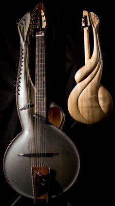 Andre instruments - Multi no.2 Archtop w/sympathetics  --- https://www.pinterest.com/lardyfatboy/ Confira aqui http://mundodemusicas.com/lojas-instrumentos/ as melhores lojas online de Instrumentos Musicais.
