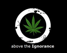 educated ( marijuana cannabis )   Join our board -->> #1Cure4Cancer   www.mycutcorep.com/JamesTaylor